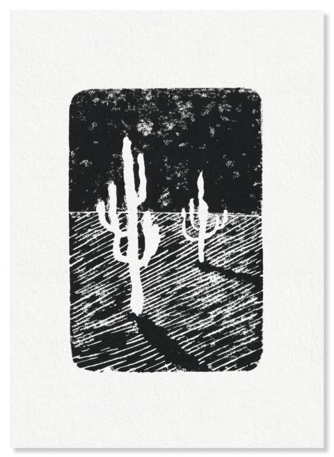 Cactus en la Quebrada de las Señoritas